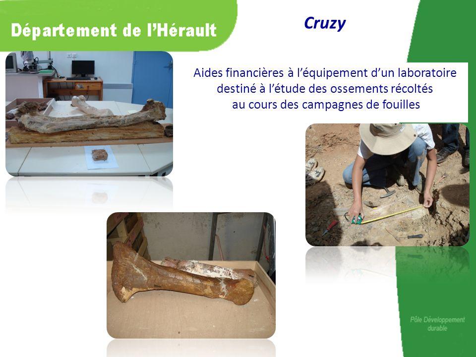 Aides financières à léquipement dun laboratoire destiné à létude des ossements récoltés au cours des campagnes de fouilles Cruzy