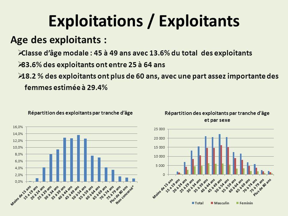 Exploitations / Exploitants Age des exploitants : Classe dâge modale : 45 à 49 ans avec 13.6% du total des exploitants 83.6% des exploitants ont entre 25 à 64 ans 18.2 % des exploitants ont plus de 60 ans, avec une part assez importante des femmes estimée à 29.4% Répartition des exploitants par tranche dâge Répartition des exploitants par tranche dâge et par sexe