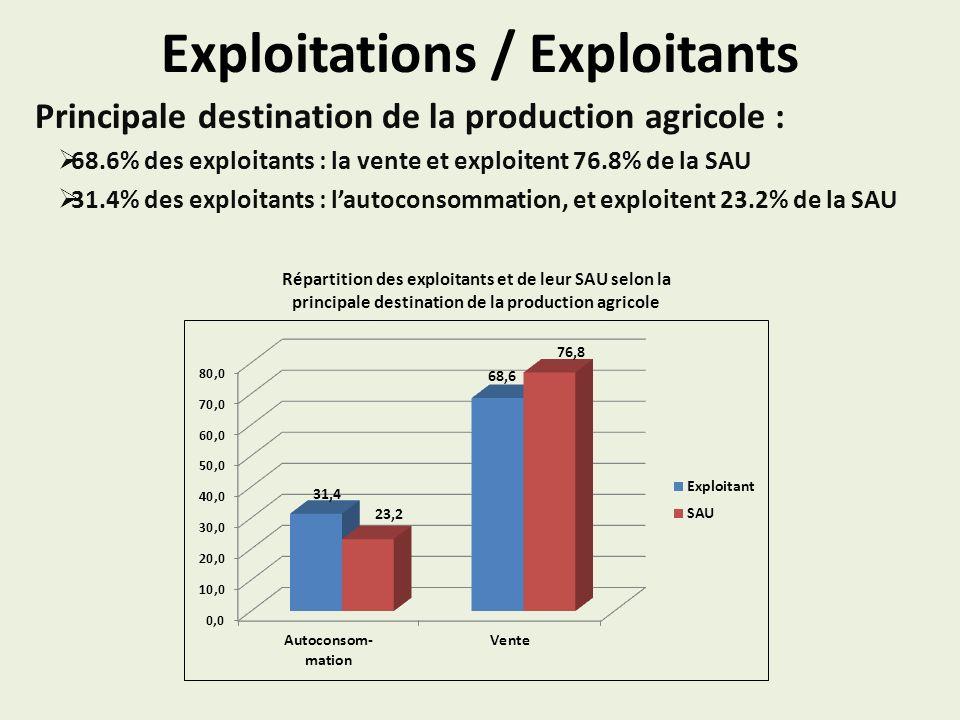 Exploitations / Exploitants Principale destination de la production agricole : 68.6% des exploitants : la vente et exploitent 76.8% de la SAU 31.4% des exploitants : lautoconsommation, et exploitent 23.2% de la SAU Répartition des exploitants et de leur SAU selon la principale destination de la production agricole