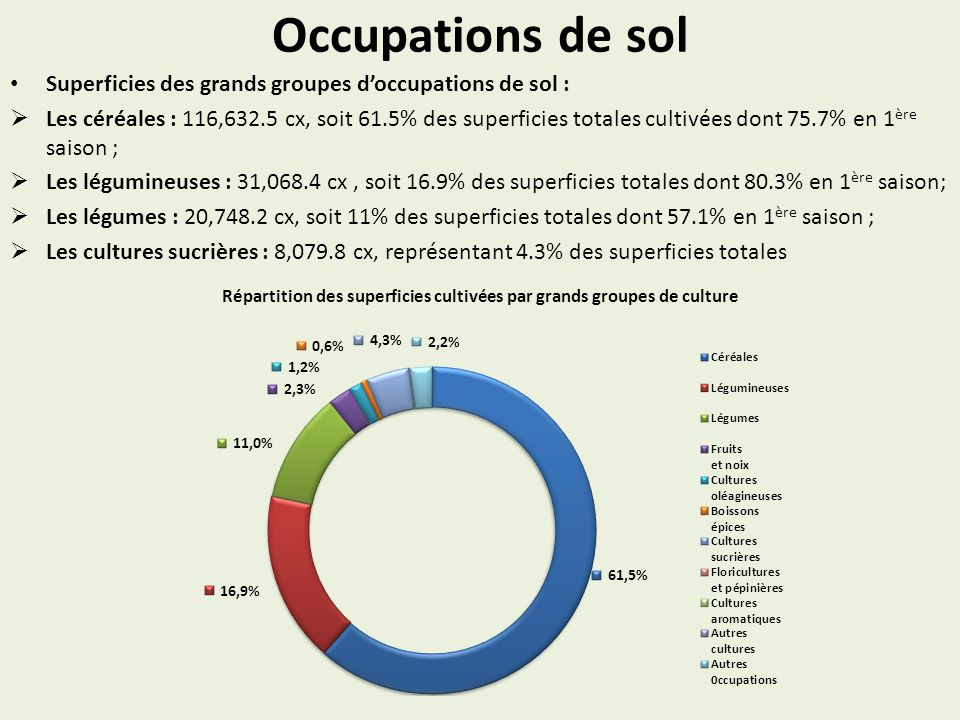 Occupations de sol Superficies des grands groupes doccupations de sol : Les céréales : 116,632.5 cx, soit 61.5% des superficies totales cultivées dont 75.7% en 1 ère saison ; Les légumineuses : 31,068.4 cx, soit 16.9% des superficies totales dont 80.3% en 1 ère saison; Les légumes : 20,748.2 cx, soit 11% des superficies totales dont 57.1% en 1 ère saison ; Les cultures sucrières : 8,079.8 cx, représentant 4.3% des superficies totales Répartition des superficies cultivées par grands groupes de culture