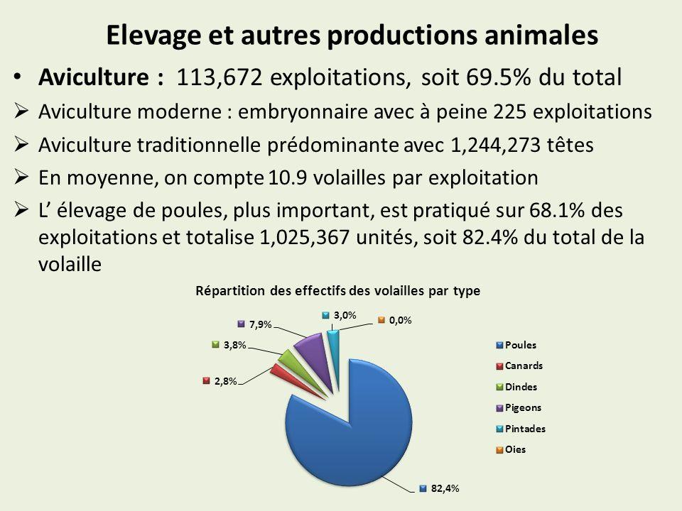 Elevage et autres productions animales Aviculture : 113,672 exploitations, soit 69.5% du total Aviculture moderne : embryonnaire avec à peine 225 exploitations Aviculture traditionnelle prédominante avec 1,244,273 têtes En moyenne, on compte 10.9 volailles par exploitation L élevage de poules, plus important, est pratiqué sur 68.1% des exploitations et totalise 1,025,367 unités, soit 82.4% du total de la volaille Répartition des effectifs des volailles par type