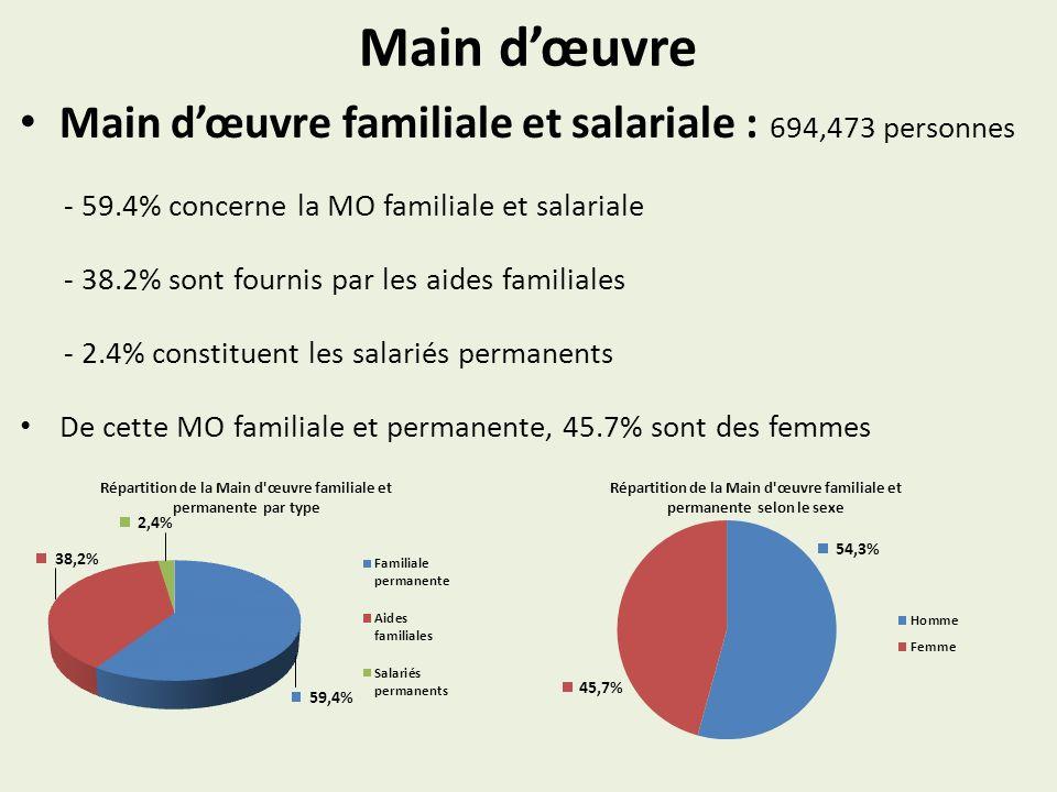 Main dœuvre Main dœuvre familiale et salariale : 694,473 personnes - 59.4% concerne la MO familiale et salariale - 38.2% sont fournis par les aides familiales - 2.4% constituent les salariés permanents De cette MO familiale et permanente, 45.7% sont des femmes