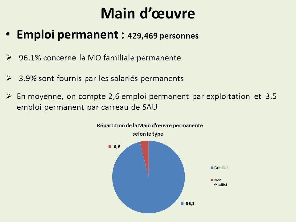 Main dœuvre Emploi permanent : 429,469 personnes 96.1% concerne la MO familiale permanente 3.9% sont fournis par les salariés permanents En moyenne, on compte 2,6 emploi permanent par exploitation et 3,5 emploi permanent par carreau de SAU Répartition de la Main d œuvre permanente selon le type