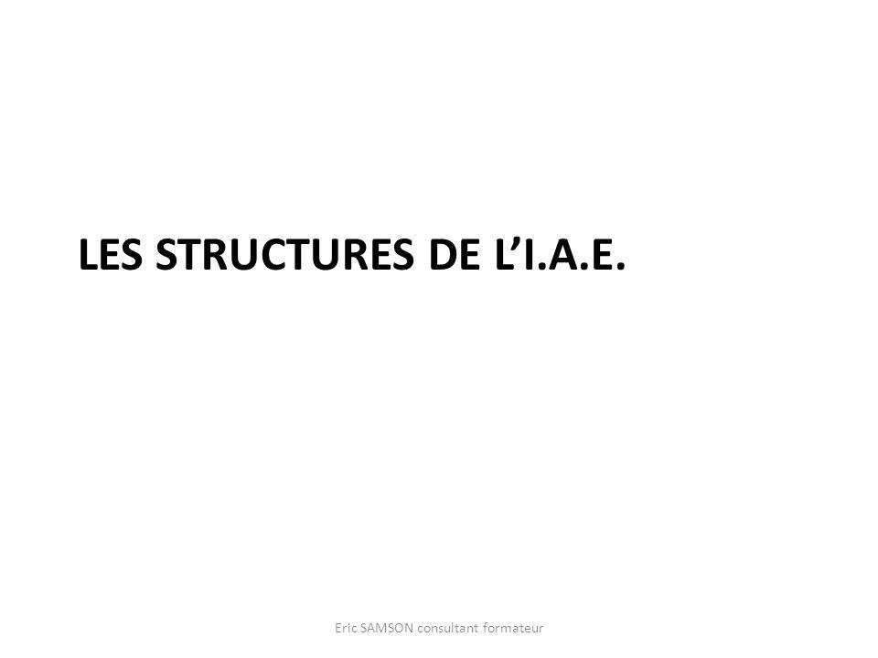 LES STRUCTURES DE LI.A.E. Eric SAMSON consultant formateur