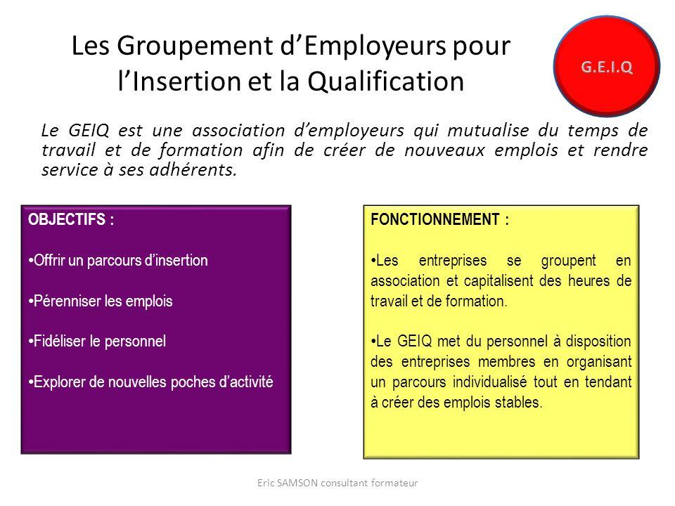 Les Groupement dEmployeurs pour lInsertion et la Qualification Le GEIQ est une association demployeurs qui mutualise du temps de travail et de formation afin de créer de nouveaux emplois et rendre service à ses adhérents.