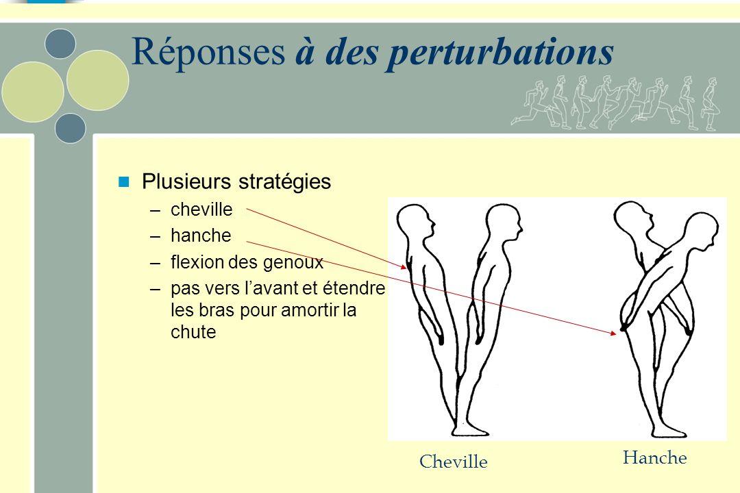 Réactions posturales Réactions posturales à des perturbations chez lHomme –ajustements suite à des perturbations –ajustements lors du mouvement volont