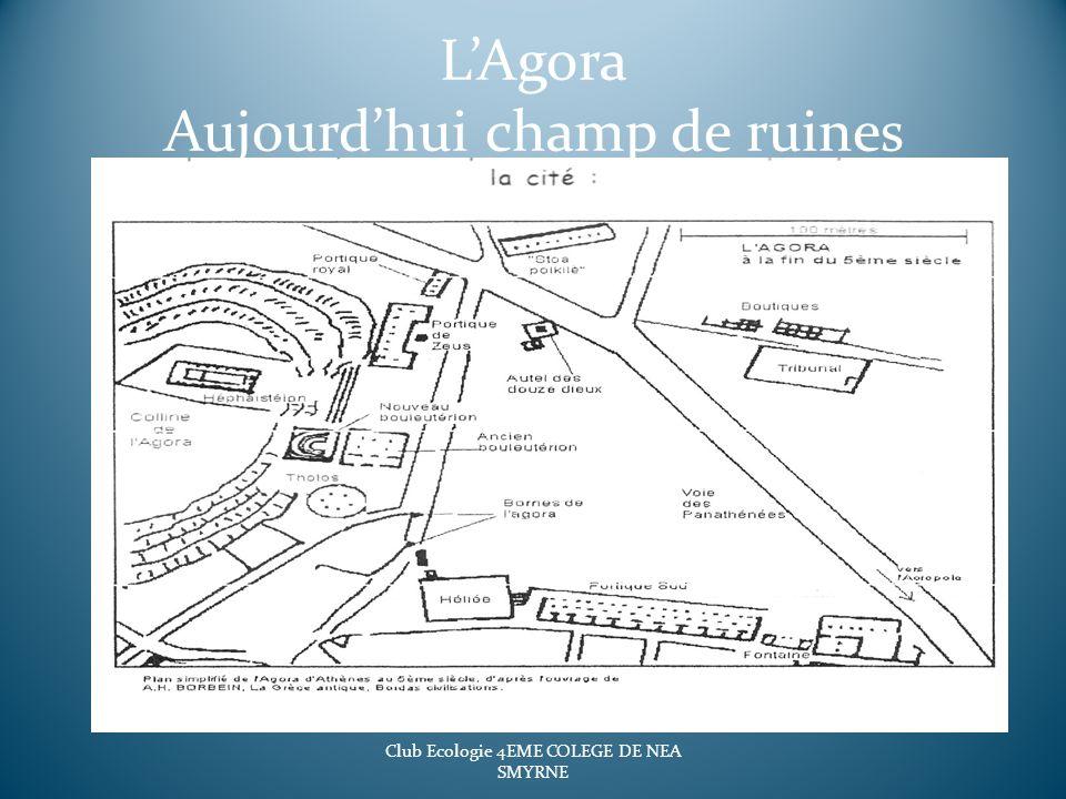LAgora Aujourdhui champ de ruines Club Ecologie 4EME COLEGE DE NEA SMYRNE