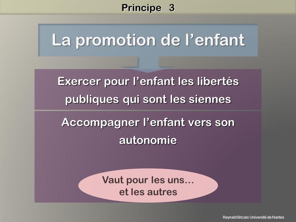 Exercer pour lenfant les libertés publiques qui sont les siennes Accompagner lenfant vers son autonomie La promotion de lenfant Vaut pour les uns… et les autres Principe 3 Reynald Brizais Université de Nantes