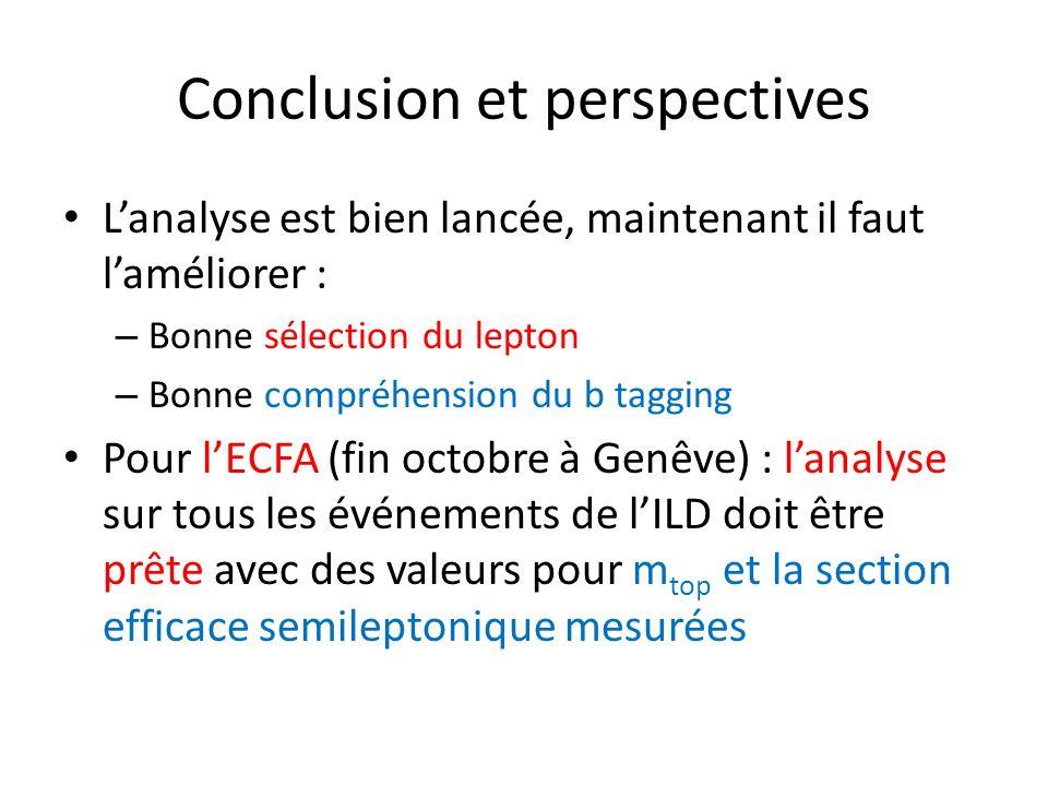 Conclusion et perspectives Lanalyse est bien lancée, maintenant il faut laméliorer : – Bonne sélection du lepton – Bonne compréhension du b tagging Po