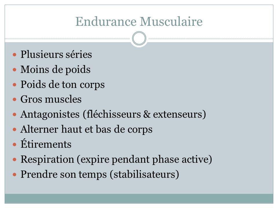 Endurance Musculaire Plusieurs séries Moins de poids Poids de ton corps Gros muscles Antagonistes (fléchisseurs & extenseurs) Alterner haut et bas de corps Étirements Respiration (expire pendant phase active) Prendre son temps (stabilisateurs)