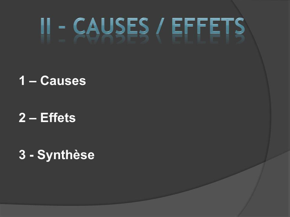 1 – Causes 2 – Effets 3 - Synthèse