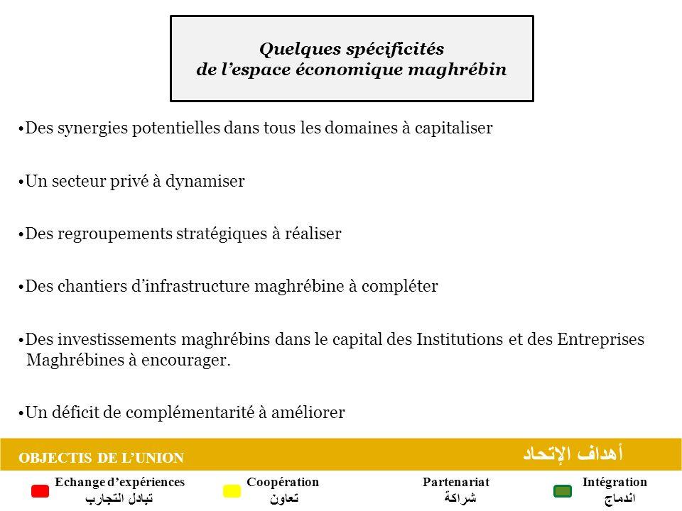 Quelques spécificités de lespace économique maghrébin Des synergies potentielles dans tous les domaines à capitaliser Un secteur privé à dynamiser Des regroupements stratégiques à réaliser Des chantiers dinfrastructure maghrébine à compléter Des investissements maghrébins dans le capital des Institutions et des Entreprises Maghrébines à encourager.