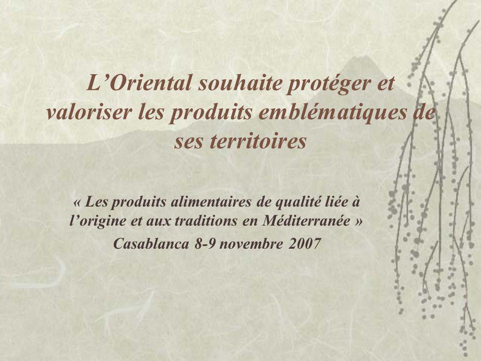 Historique 1999 : convention de partenariat entre la région Champagne Ardenne et la région de lOriental 30 juin 2006 (Oujda) : les présidents Tayeb RHAFES et Jean Paul BACHY décident la mise en place de deux IG « modèles » pour le « mouton Bni Guil des hauts plateaux de lOriental » et la « clémentine de Berkane ».