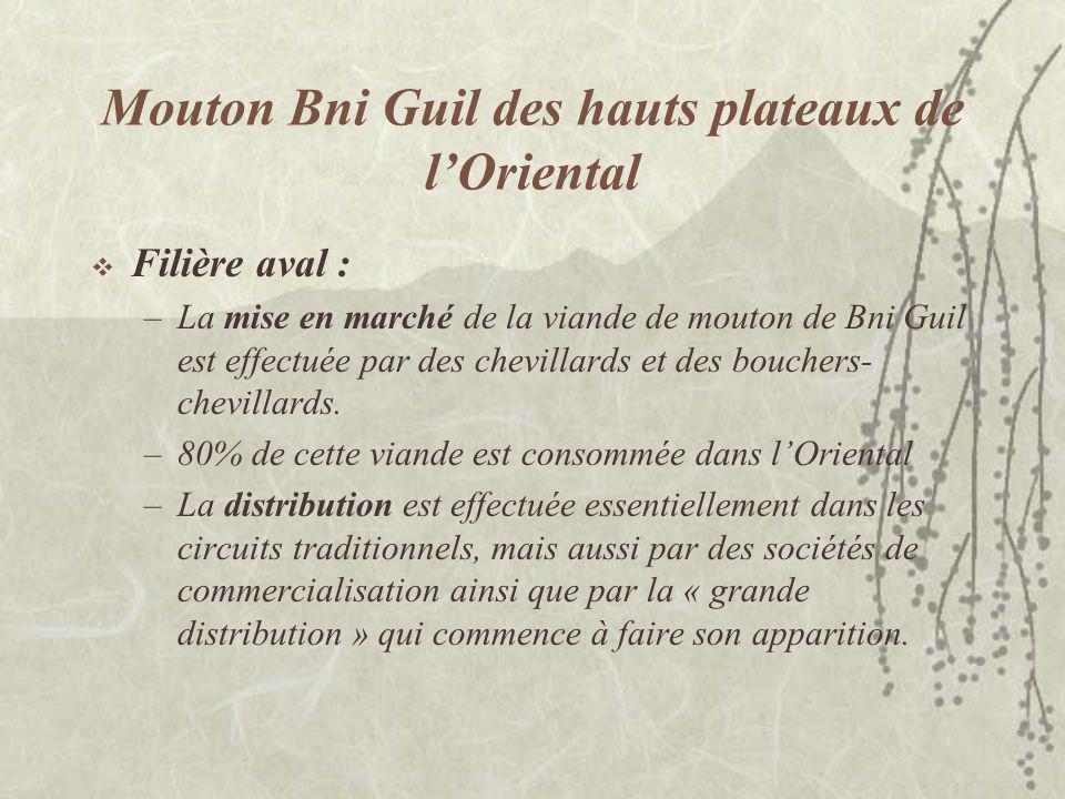 Mouton Bni Guil des hauts plateaux de lOriental Filière aval : –La mise en marché de la viande de mouton de Bni Guil est effectuée par des chevillards et des bouchers- chevillards.