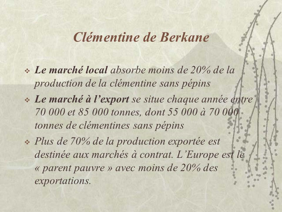 Clémentine de Berkane La clémentine de Berkane étant déjà une dénomination variétale, le nom de lIG est à préciser… Limportance de lexportation dans la démarche ne doit pas gommer la nécessité de renforcer le commerce local : la notoriété dun produit salimente dabord à partir de ses racines…
