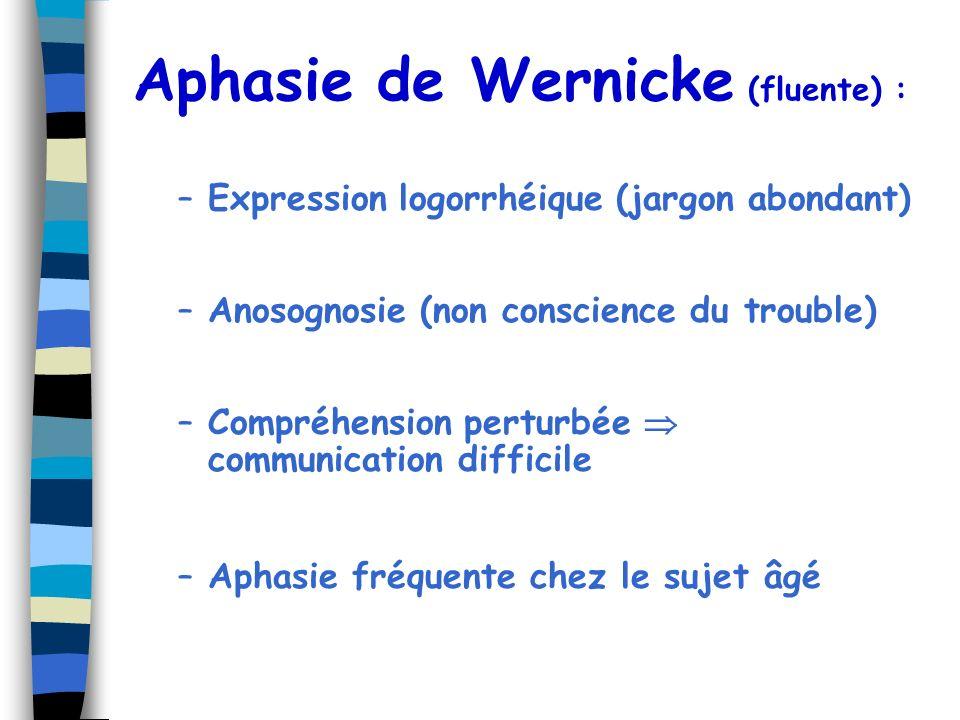 Aphasie de Wernicke (fluente) : –Expression logorrhéique (jargon abondant) –Anosognosie (non conscience du trouble) –Compréhension perturbée communica