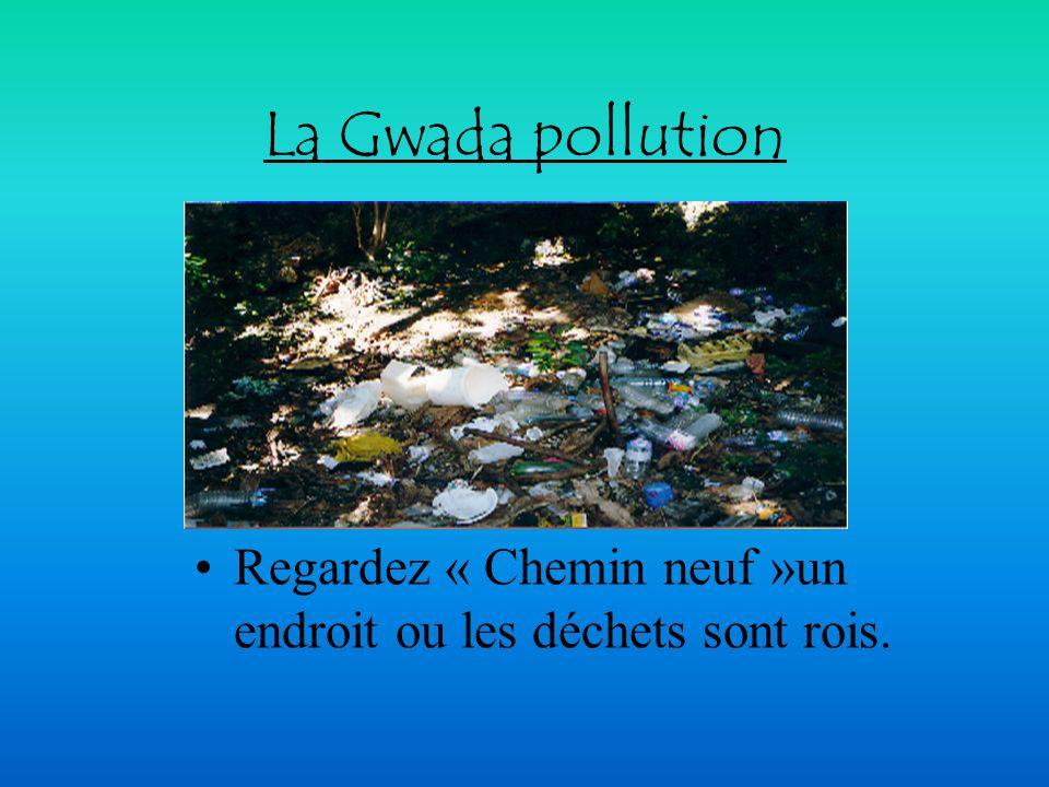 Nettoyer les eaux usées Les eaux usées subissent dans la station d épuration : Le dégrillage : elles sont débarrassées des matières grossières et iner