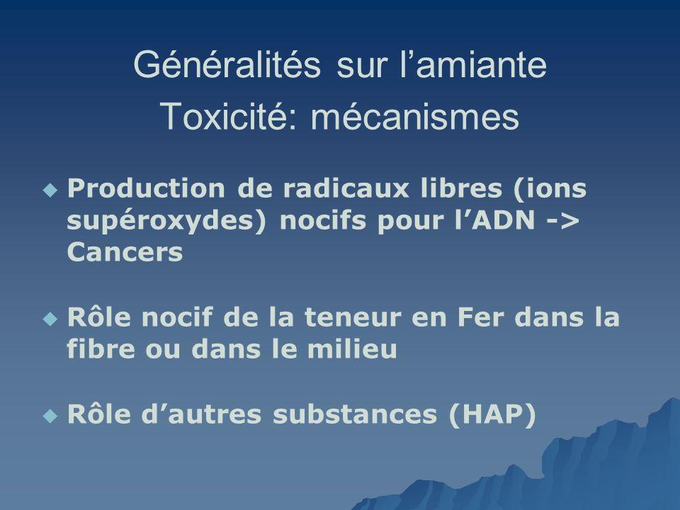 Généralités sur lamiante Toxicité: mécanismes Production de radicaux libres (ions supéroxydes) nocifs pour lADN -> Cancers Rôle nocif de la teneur en