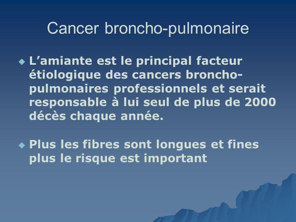 Cancer broncho-pulmonaire Lamiante est le principal facteur étiologique des cancers broncho- pulmonaires professionnels et serait responsable à lui se