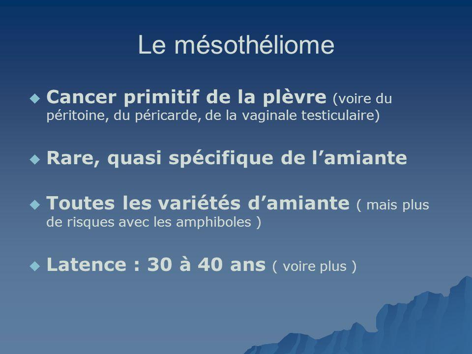 Le mésothéliome Cancer primitif de la plèvre (voire du péritoine, du péricarde, de la vaginale testiculaire) Rare, quasi spécifique de lamiante Toutes