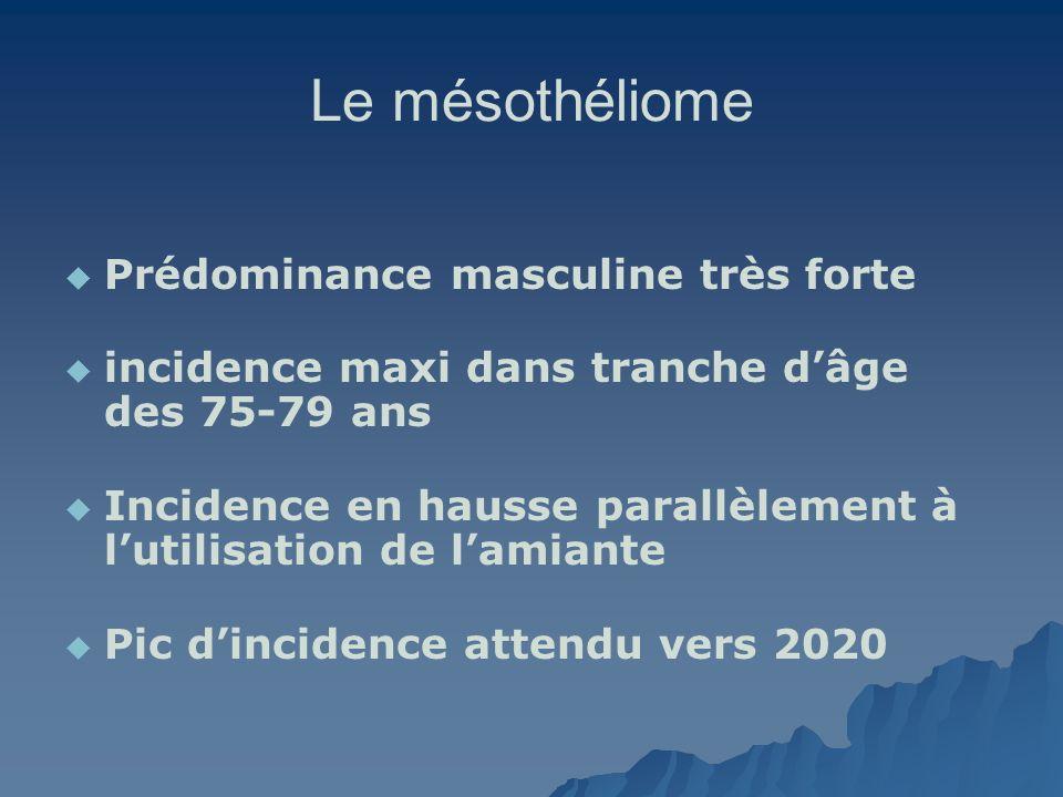 Le mésothéliome Prédominance masculine très forte incidence maxi dans tranche dâge des 75-79 ans Incidence en hausse parallèlement à lutilisation de l