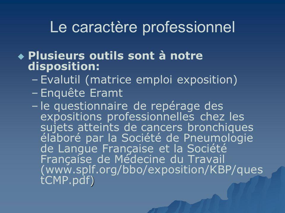Le caractère professionnel Plusieurs outils sont à notre disposition: – –Evalutil (matrice emploi exposition) – –Enquête Eramt – ) –le questionnaire d