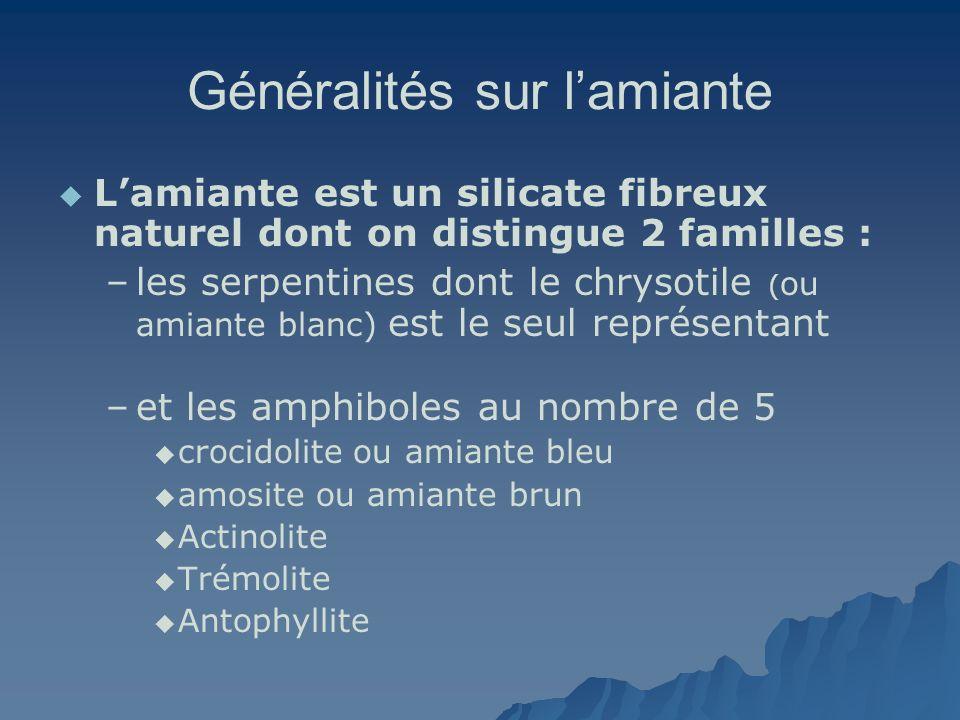 Généralités sur lamiante Lamiante est un silicate fibreux naturel dont on distingue 2 familles : – –les serpentines dont le chrysotile ( ou amiante bl