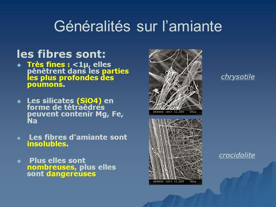 Généralités sur lamiante Type de FIBRE DIAMETRE (µm) Nb FIBRES sur 1 mm Chrysotile BLANC 0,0250 000 Crocidolite BLEU 0,0812 500 Amosite BRUN 0,1010 000 Laines de verre 0,2 – 255000 – 40 Coton2050 Cheveu7513