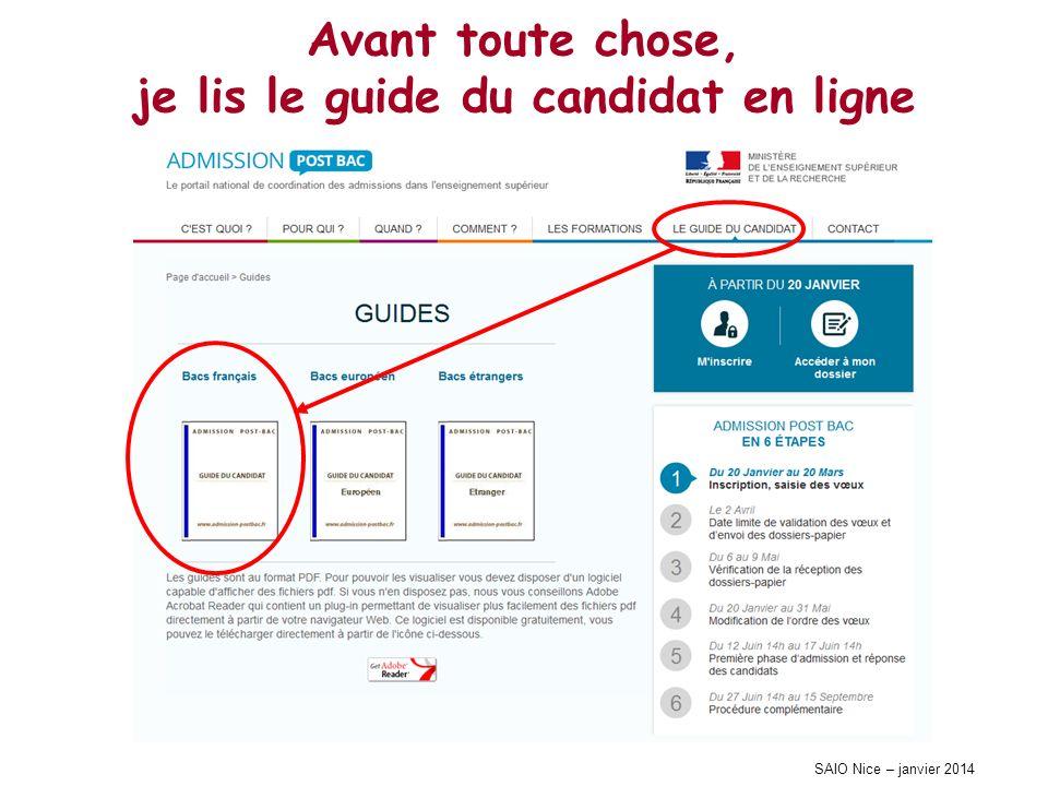 SAIO Nice – janvier 2014 Avant toute chose, je lis le guide du candidat en ligne