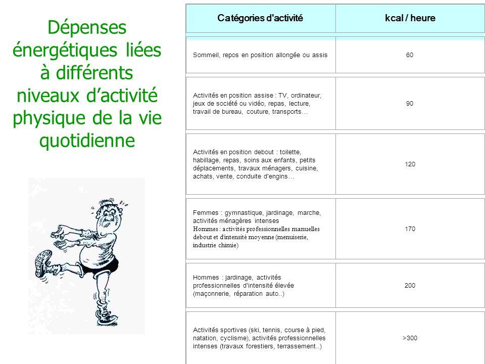 Dépenses énergétiques liées à différents niveaux dactivité physique de la vie quotidienne Dépenses énergétiques liées à différents niveaux d'activité