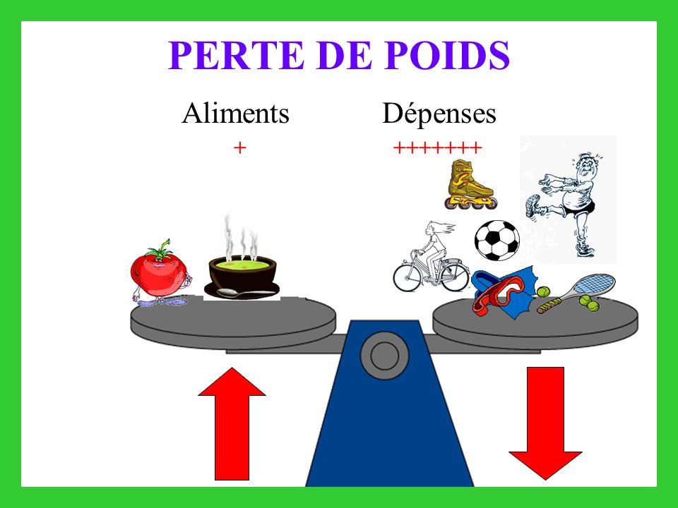 PERTE DE POIDS Aliments Dépenses ++++++++