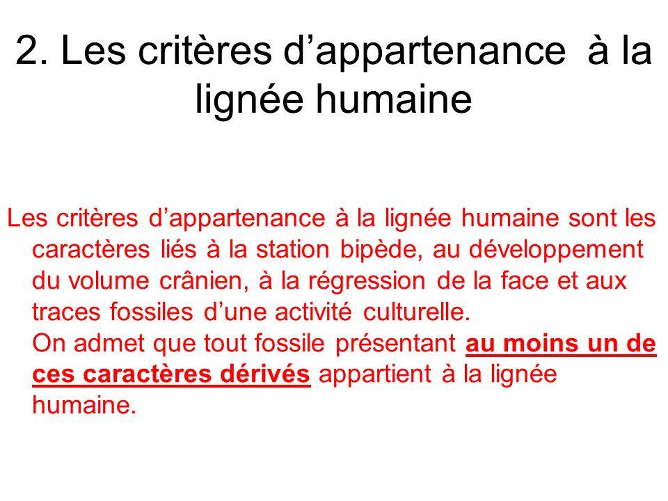Les critères dappartenance à la lignée humaine sont les caractères liés à la station bipède, au développement du volume crânien, à la régression de la