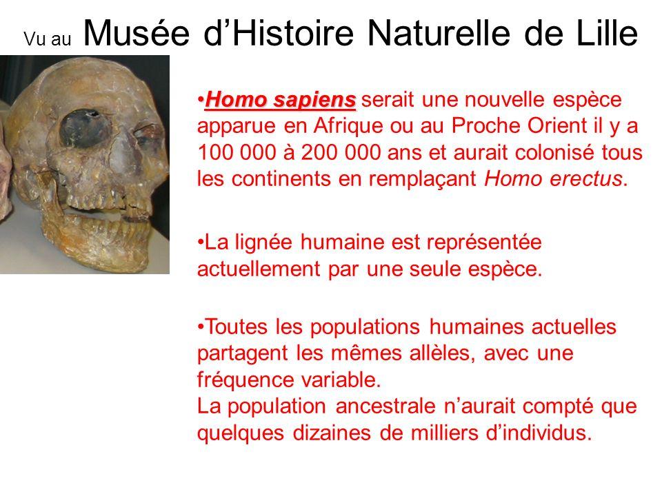 Homo sapiensHomo sapiens serait une nouvelle espèce apparue en Afrique ou au Proche Orient il y a 100 000 à 200 000 ans et aurait colonisé tous les co