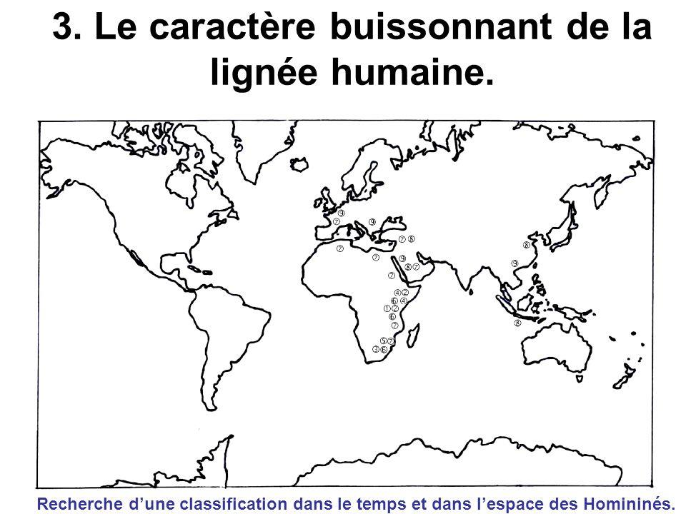 3. Le caractère buissonnant de la lignée humaine. Recherche dune classification dans le temps et dans lespace des Homininés.