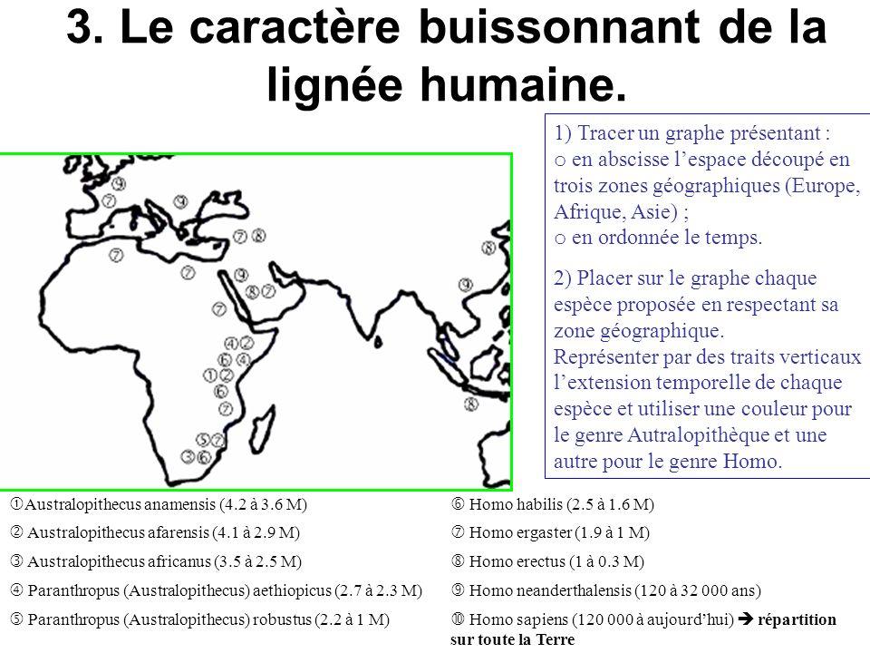 3. Le caractère buissonnant de la lignée humaine. 1) Tracer un graphe présentant : o en abscisse lespace découpé en trois zones géographiques (Europe,