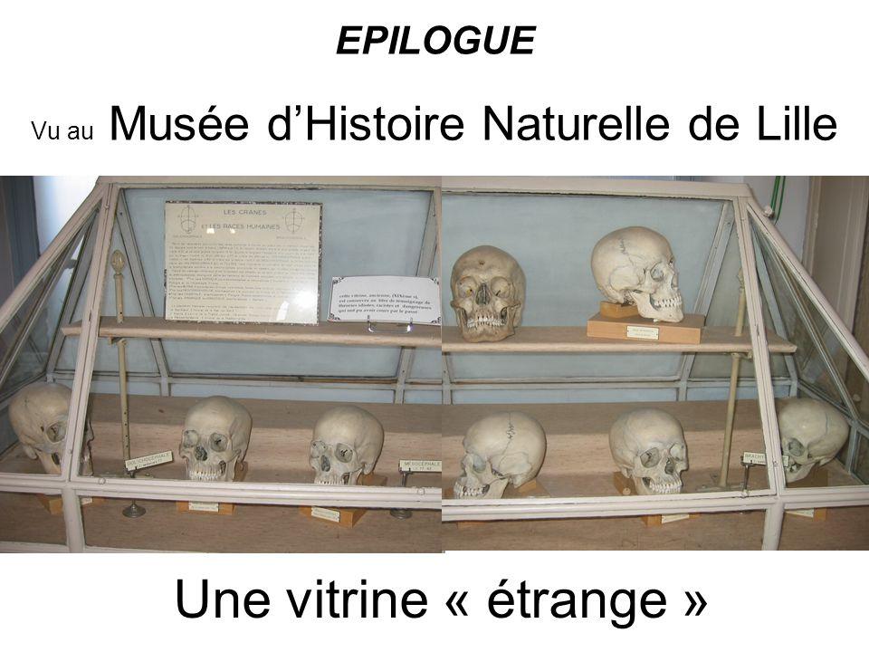 Une vitrine « étrange » Vu au Musée dHistoire Naturelle de Lille EPILOGUE