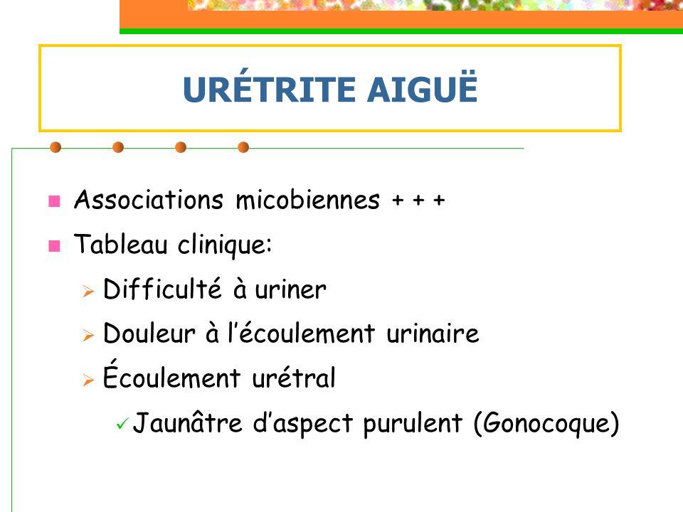 Associations micobiennes + + + Tableau clinique: Difficulté à uriner Douleur à lécoulement urinaire Écoulement urétral Jaunâtre daspect purulent (Gono