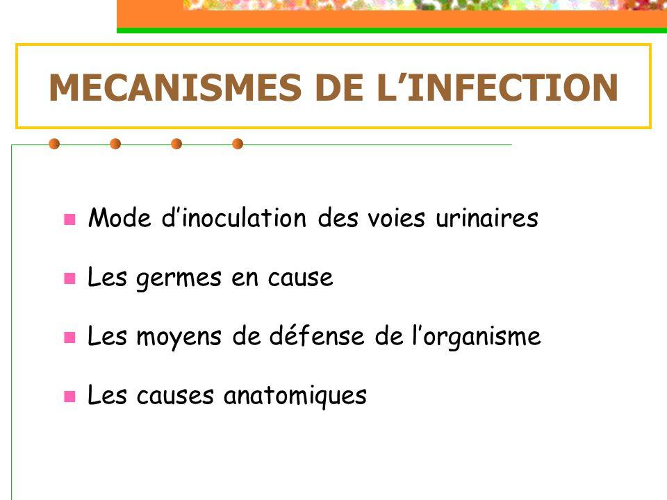 Inoculation des voies urinaires Il existe 3 moyens de pénétration et de colonisation des voies urinaires: Voie ascendante Voie hématogène Voie lymphatique (exceptionnelle)