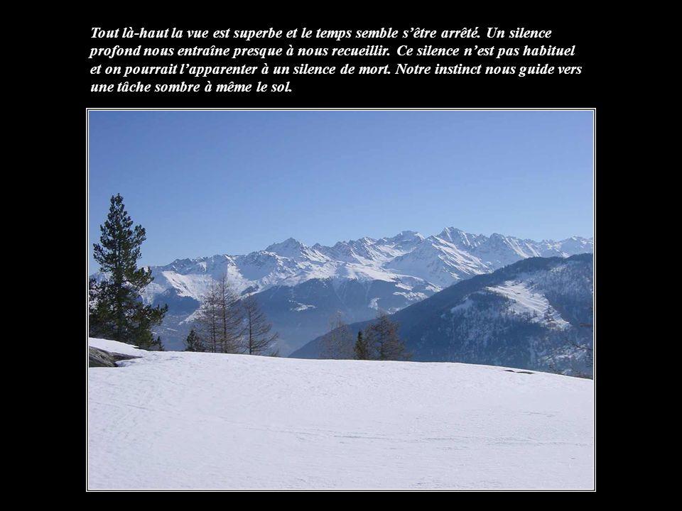 Lhiver, la montagne restée à létat pur semble privée de vie. Le froid fige les paysages, Tout à coup, une immense ombre se déplace sur le sol enneigé,