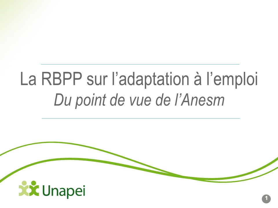 La RBPP sur ladaptation à lemploi Du point de vue de lAnesm 1