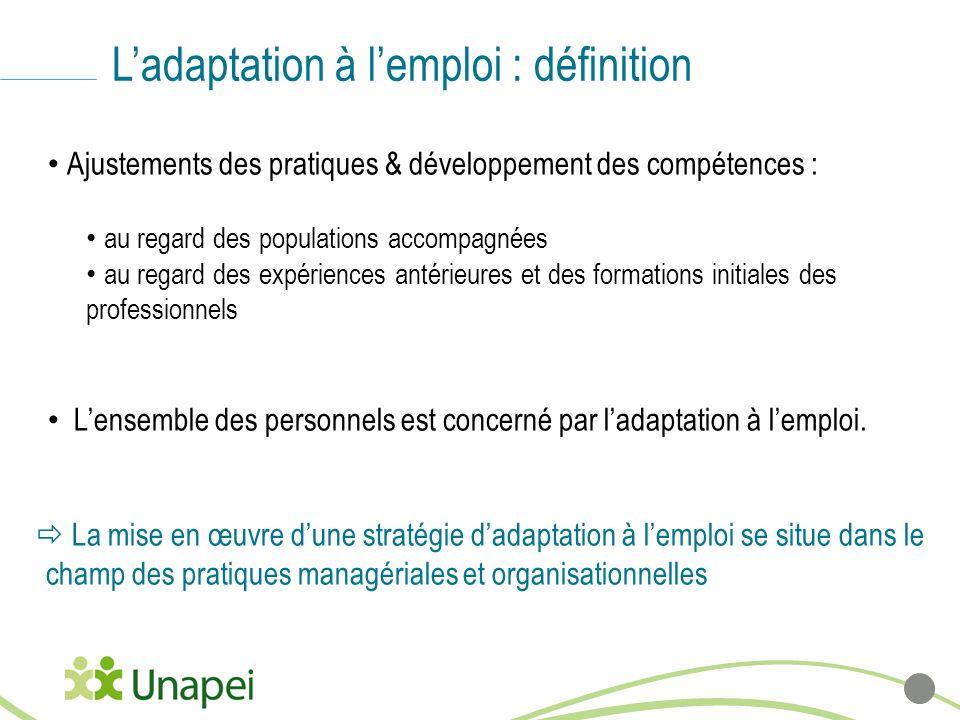Ladaptation à lemploi : définition Ajustements des pratiques & développement des compétences : au regard des populations accompagnées au regard des ex