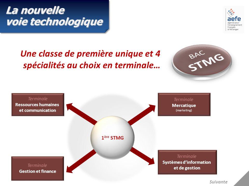 Terminale Gestion et finance Terminale Systèmes dinformation et de gestion Terminale Mercatique (marketing) Terminale Ressources humaines et communica