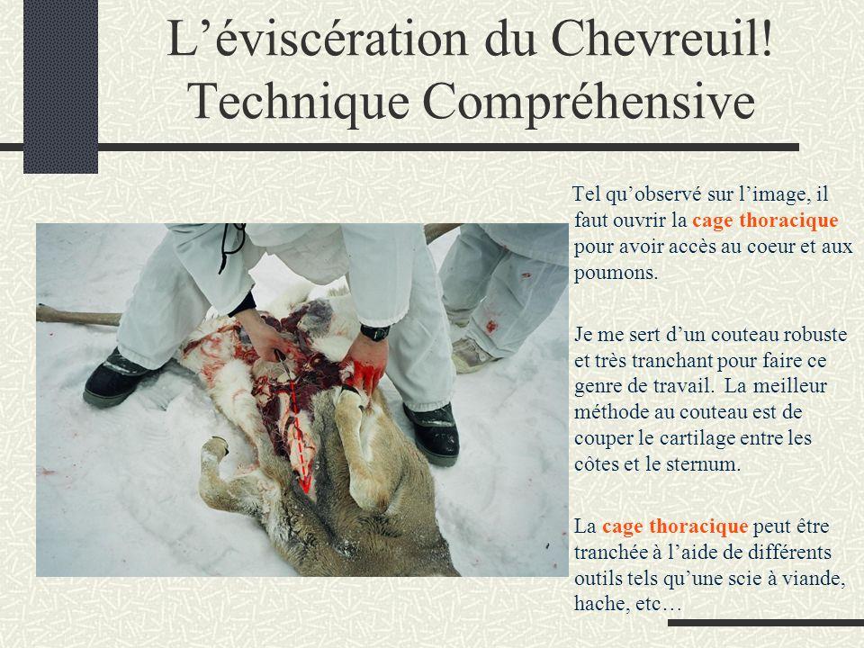 Léviscération du Chevreuil.