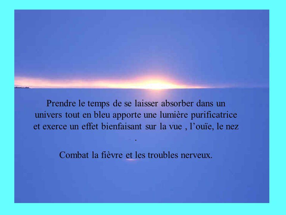 Prendre le temps de se laisser absorber dans un univers tout en bleu apporte une lumière purificatrice et exerce un effet bienfaisant sur la vue, louïe, le nez.