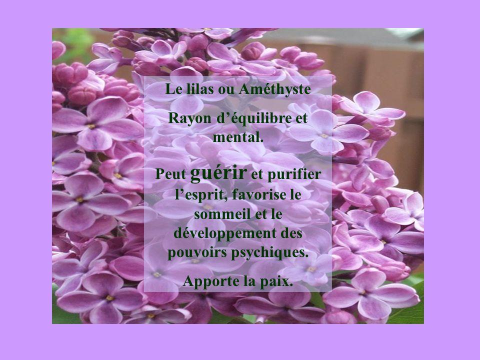 Le lilas ou Améthyste Rayon déquilibre et mental. Peut guérir et purifier lesprit, favorise le sommeil et le développement des pouvoirs psychiques. Ap