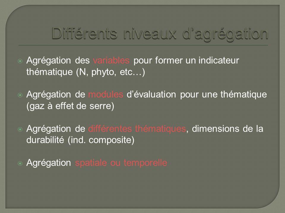Agrégation des variables pour former un indicateur thématique (N, phyto, etc…) Agrégation de modules dévaluation pour une thématique (gaz à effet de serre) Agrégation de différentes thématiques, dimensions de la durabilité (ind.
