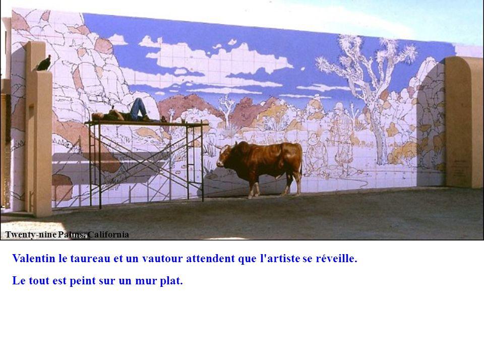 Twenty-nine Palms, California Valentin le taureau et un vautour attendent que l'artiste se réveille. Le tout est peint sur un mur plat.