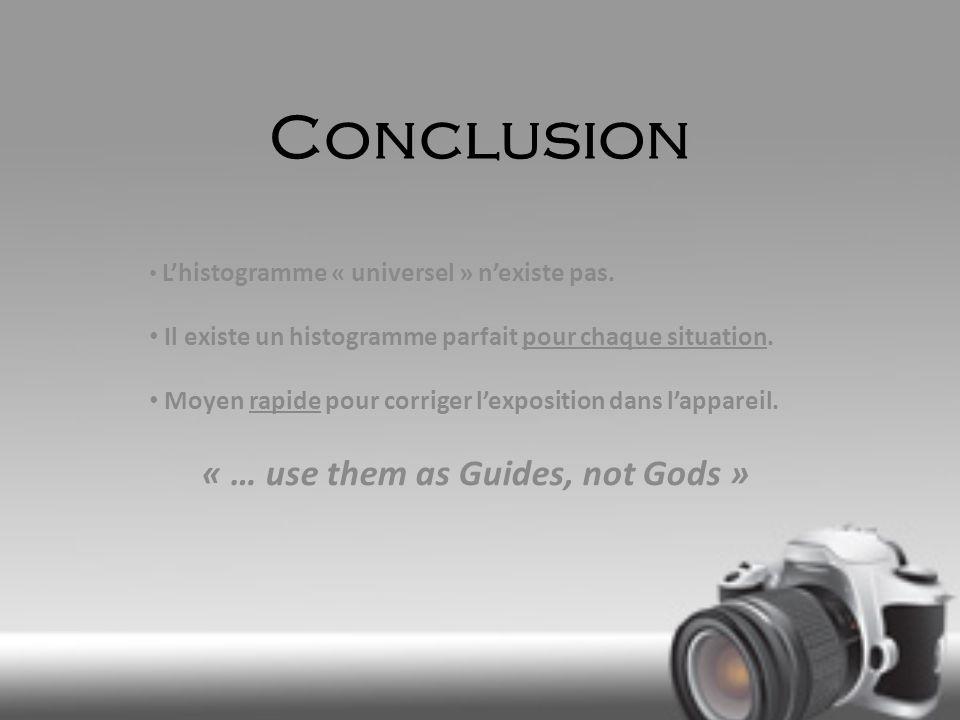 Conclusion Lhistogramme « universel » nexiste pas. Il existe un histogramme parfait pour chaque situation. Moyen rapide pour corriger lexposition dans