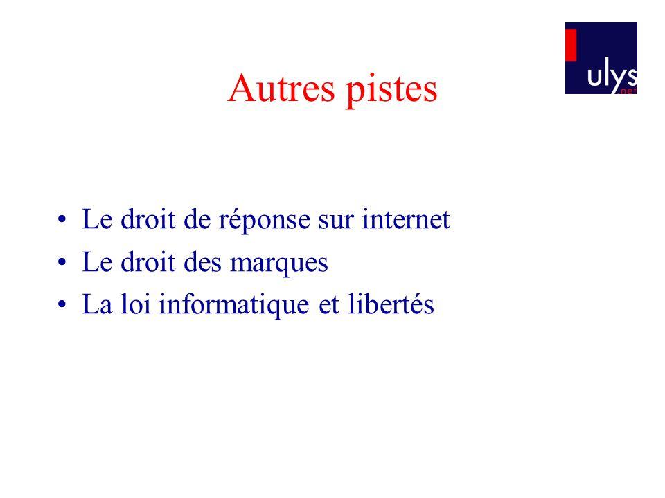 Autres pistes Le droit de réponse sur internet Le droit des marques La loi informatique et libertés