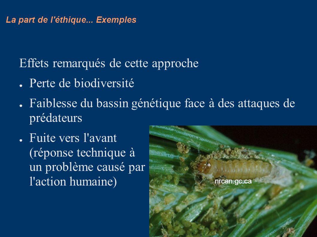 La part de l'éthique... Exemples Effets remarqués de cette approche Perte de biodiversité Faiblesse du bassin génétique face à des attaques de prédate
